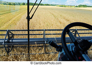 View from the cabin of a combine harvester at the wheat...