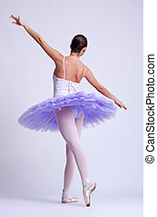 back picture of a ballerina wearing a purple tu tu, studio...