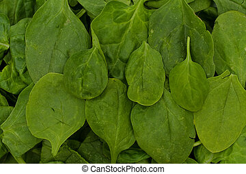 Super Food Spinach - A pile of spinach isolated on white,...
