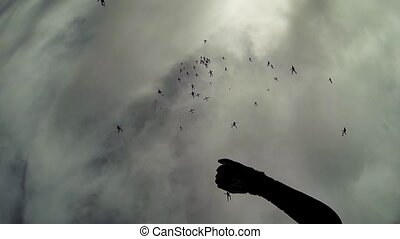 Skydivers falling in grey sky. Making huge formation....