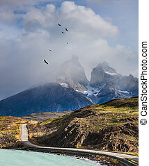 Over mountains the Andean condors turn - The concept of...