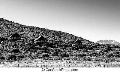 B & W landscape of The Travelling Tortoise - The Travelling...
