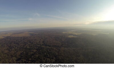 Top view of forest in sunny weather - Top view from hot air...