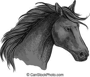 Black riding horse sketch of arabian stallion - Sketched...