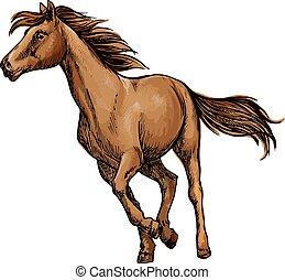 Running horse sketch with brown racehorse - Running horse...