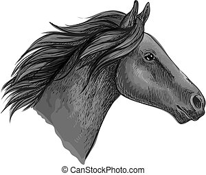 Black stallion horse sketch with racehorse head - Black...