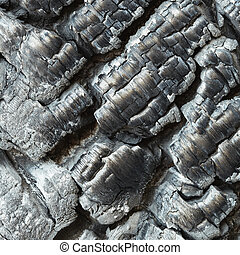 Charcoal - The charcoal close up - a fire consequence