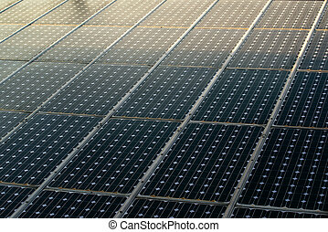 Sunlight on solar panels photovoltaic cell modules
