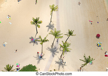 aerial dreaming - An aerial view of people relaxing on a...