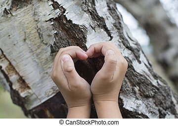 Female hands making an heart shape on a trunk of a tree...
