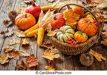 Autumn still life with pumpkins, corncobs and leaves on...