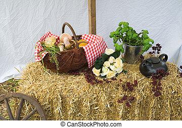 Picknick scene