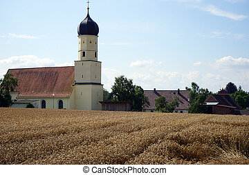 Parish church and whrat field - Wheat field and parish...