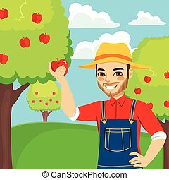 Farmer Picking Red Apple - Young farmer man picking red...
