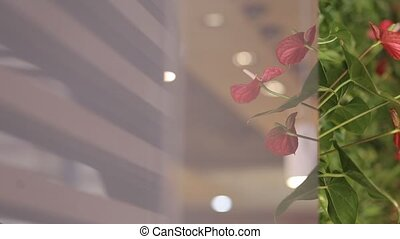 Interior decoration of flowers - Interior decoration with...