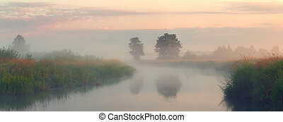 autunno, nebbioso, lago, Mattina