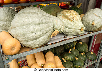 Butternut, Kabocha and Hubbard squashes at the local market...