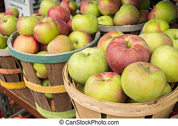 Lobo apples in a basket at the market