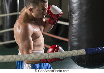 Boxer punching a heavy bag - Male boxer punching a heavy bag...