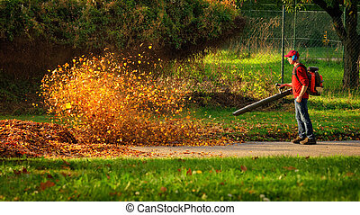 Heavy duty leaf blower in action - Man operating a heavy...