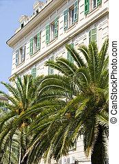 typical architecture ajaccio corsica island france