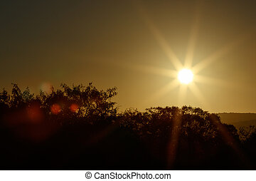 Sunset in Addo with Sun Flare - Sunset in Addo - Addo is a...