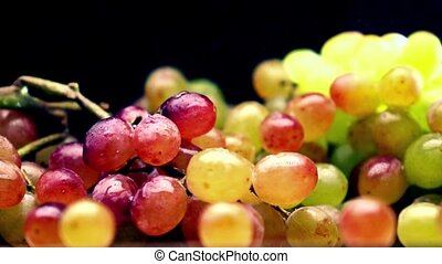 Sprinkling water over multicolor grape bunch. Super slow motion video