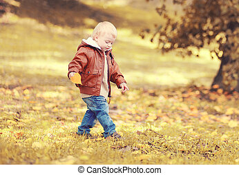 Cute little child boy walking in autumn day, view profile