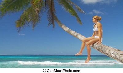 woman sitting on palmtree