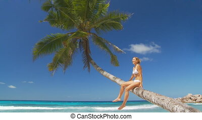 woman relaxing on palmtree - woman in white bikini relaxing...