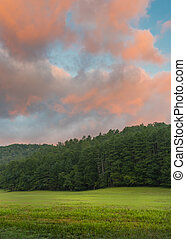 Coral Clouds Above Peaceful Green Field