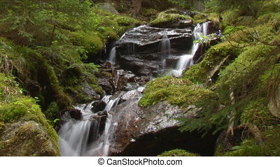 waterfall in wood slow shutter - small cascades in humid...