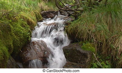 idyllic waterfall standard - idyllic small waterfall in...