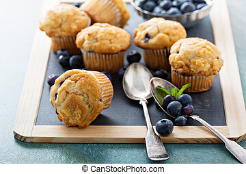 Blueberry muffins on a tray - Blueberry muffins on a...