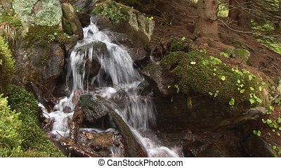 waterfall with moss - small cascades over mossy stones in...