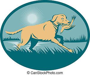 rained Retriever dog with bird on wetland set inside an...