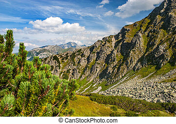 Mountain landscape. High Tatras, Poland. - Hiking in the...