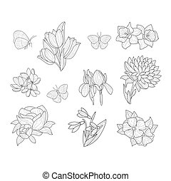 Spring Flowers And Butterflies Isolated Hand Drawn Realistic...