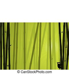 Bamboo Background. Nature Background Series.
