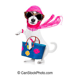 買い物, 犬, 花型女性歌手