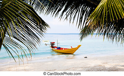 Longtail Boat - Traditional Longtail Boat. Koh Tao Island....