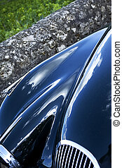 Car body and vineyards - Close up of a blue car body among...