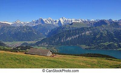 estate, giorno, in, il, bernese, Oberland