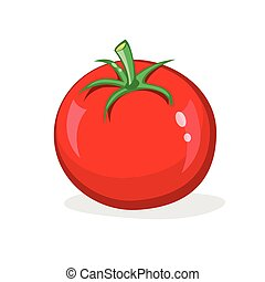 One red tomato isolated on white background. Fresh glossy...