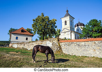 Near the walls of Capriana Monastery, Moldova - Rustic...