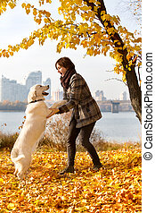 Woman in autumn park playing with her dog - Woman playing...