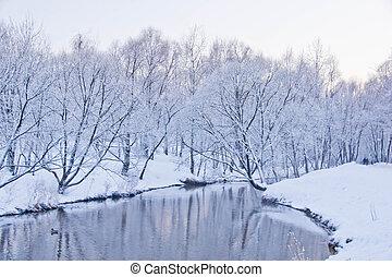 rivière, Parc, hiver, jour