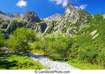 Valley in High Tatra Mountains - Dolina Zeleneho plesa...