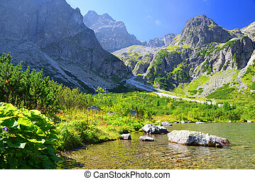 Mountain lake Zelene pleso - Beautiful summer landscape...