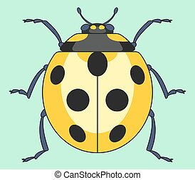 Yellow ladybug insect - Illustration of the yellow ladybug...